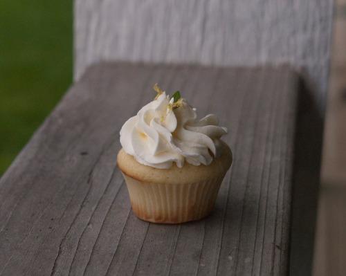 Individual_cupcake